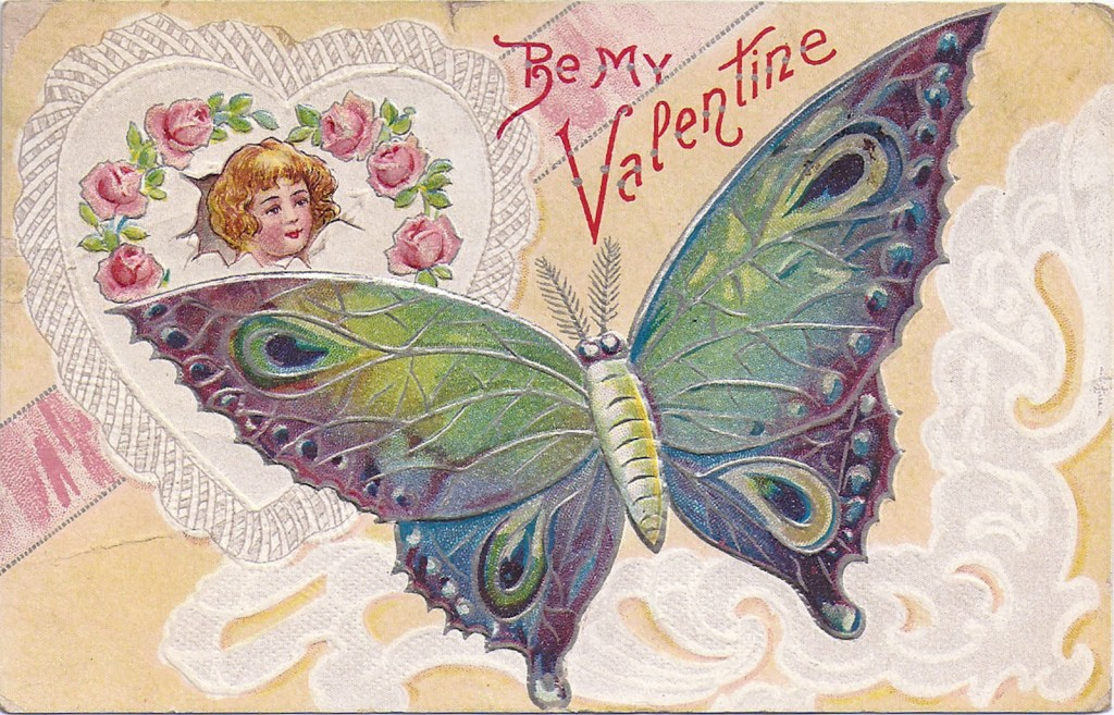 Valentines butterfly